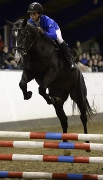 First Choice og Katja Andersen til Hingsteshow Nord 2014